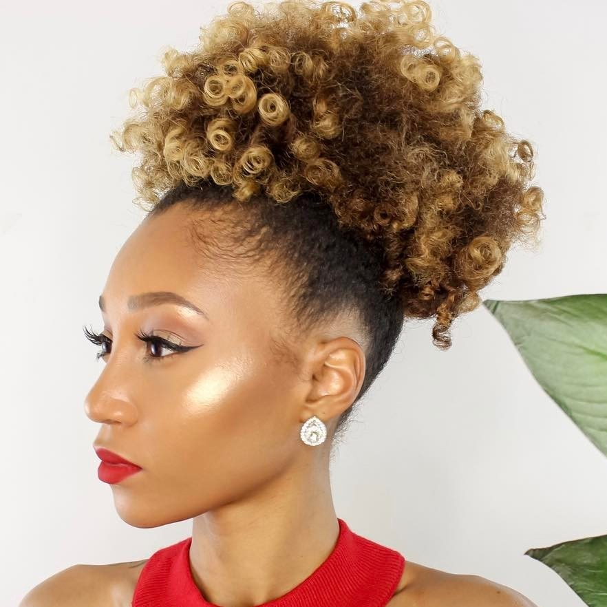 Afro Puff With Highlights