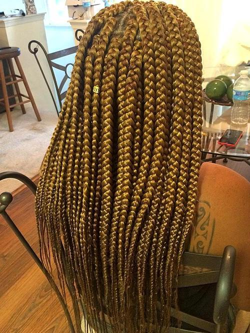 40 Gorgeous Big Box Braids Styles