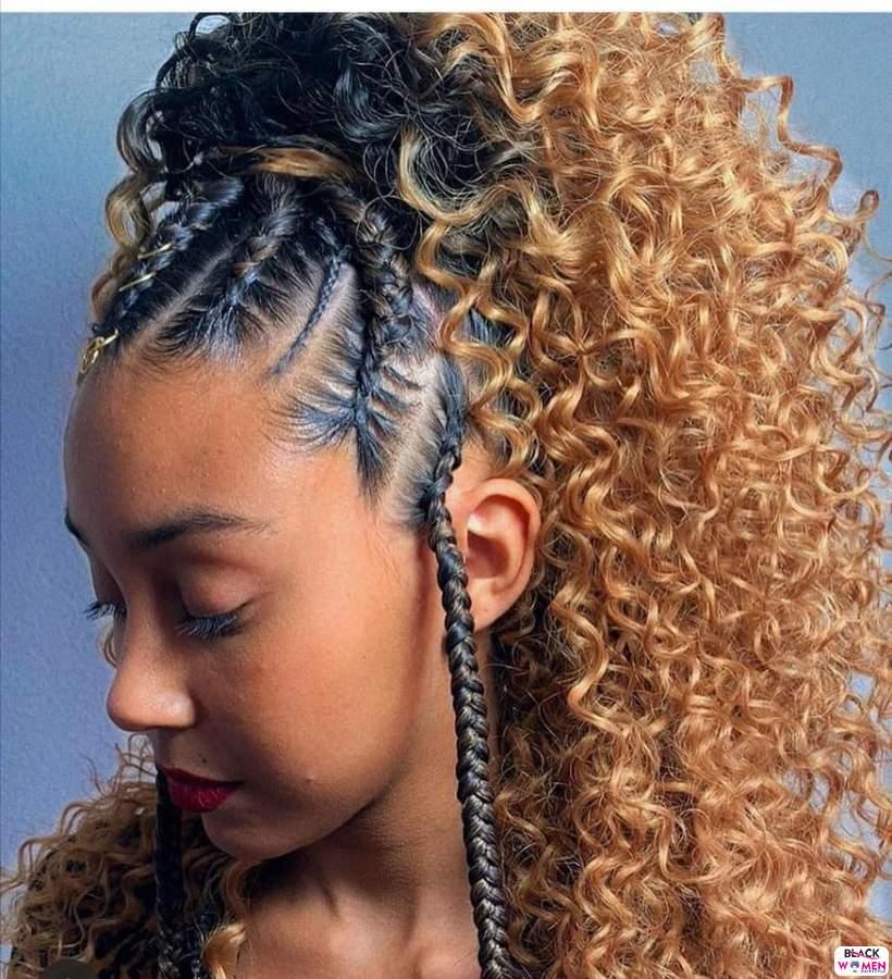 Braids hairstyles 010