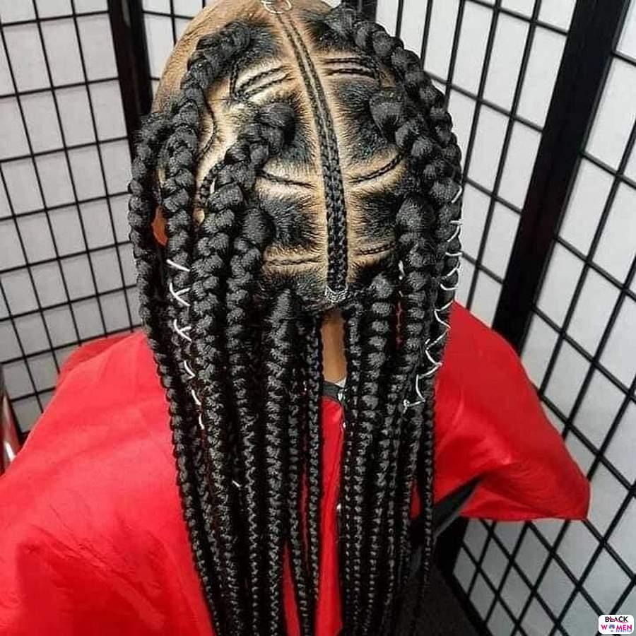 Braids hairstyles 014