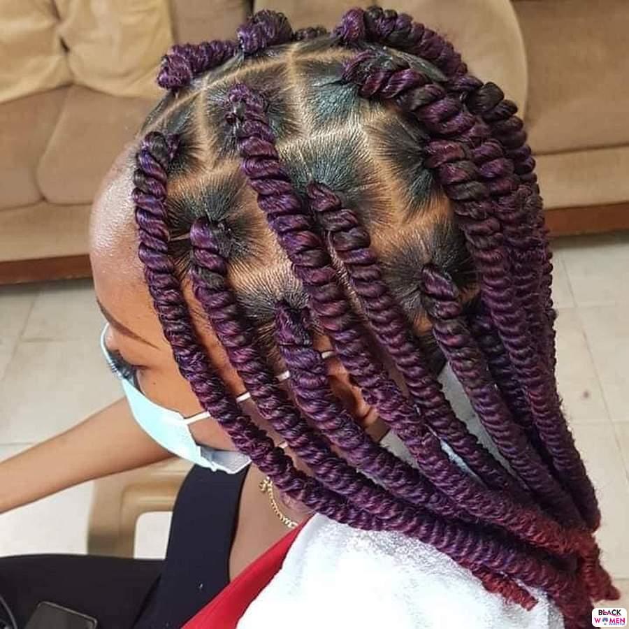 Braids hairstyles 025