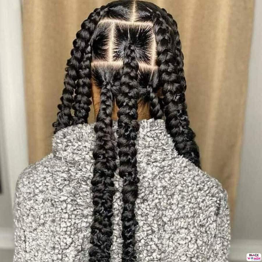Braids hairstyles 026