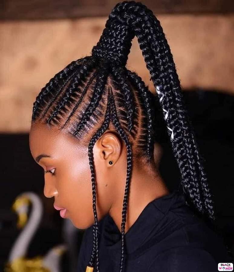 Braids hairstyles 030