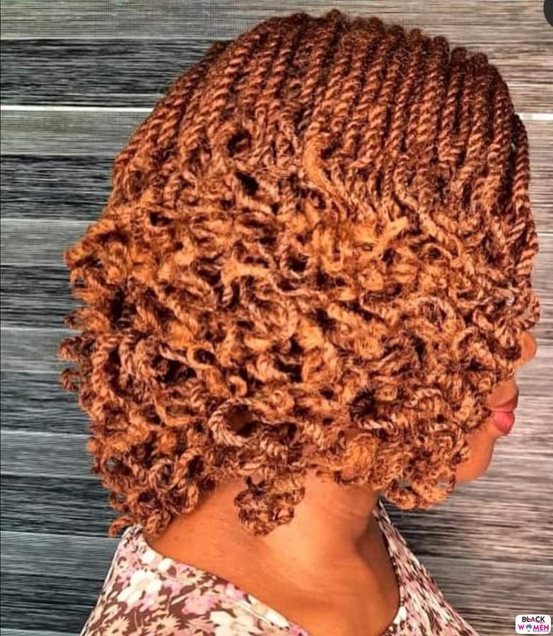 Braids hairstyles 034