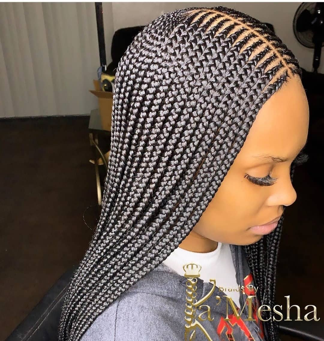 2020 Braided Hairstyles : Wonderful Newest Hair Developments