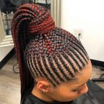 African Braids Hairstyles, Fairly Braid Kinds for Black Ladies
