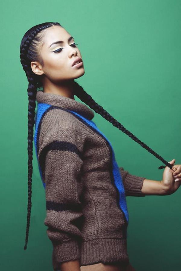 12black braid hairstyles 250816