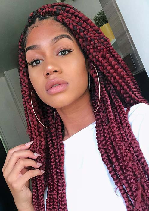 Dark Red Braids