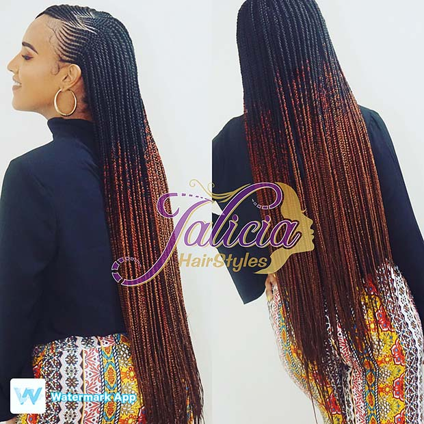Stylish Ombre Braids
