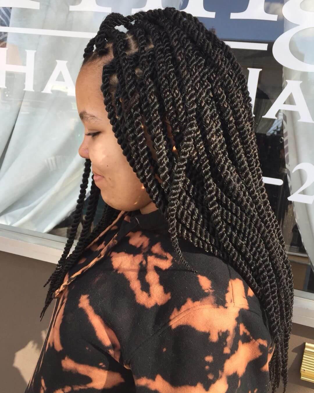 Twist Braids Hairstyles 9
