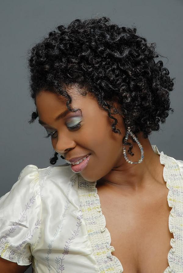 hairstyles for natural black hair inspirational 40 natural hair styles for black women which are cool of hairstyles for natural black ha