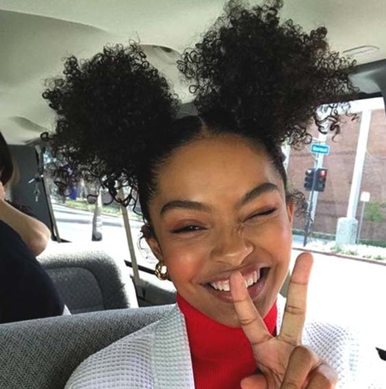 protective hairstyles double buns