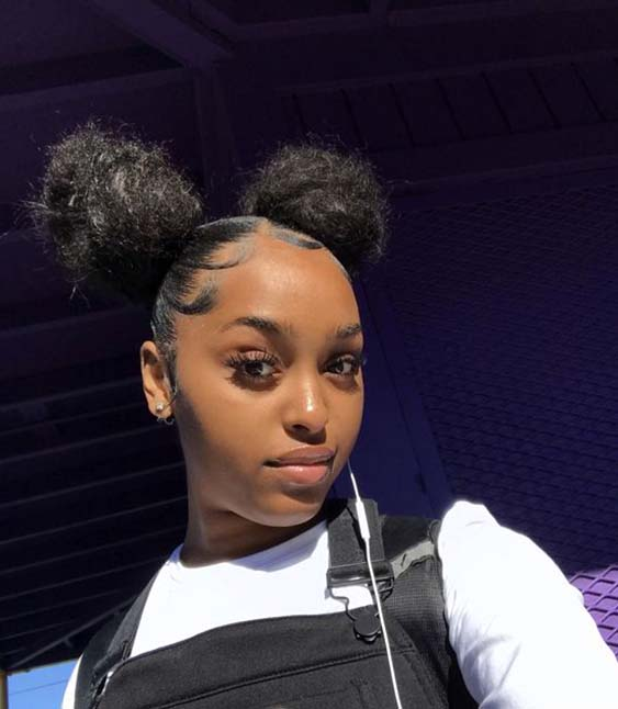 protective hairstyles summer 2019 double buns