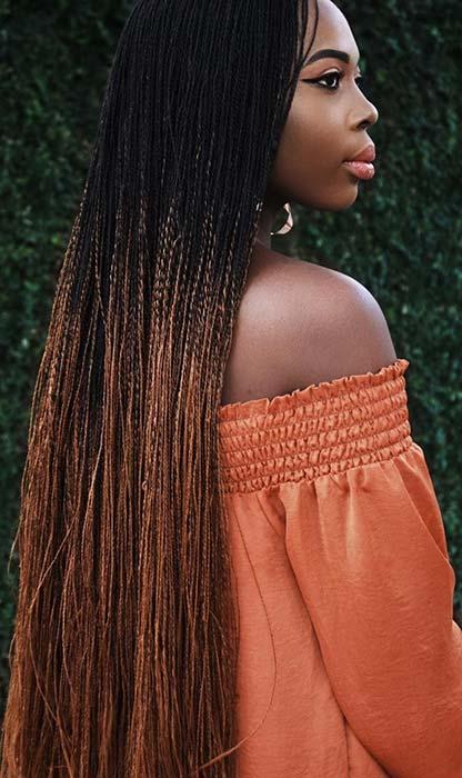 twist braids hairstyles 2