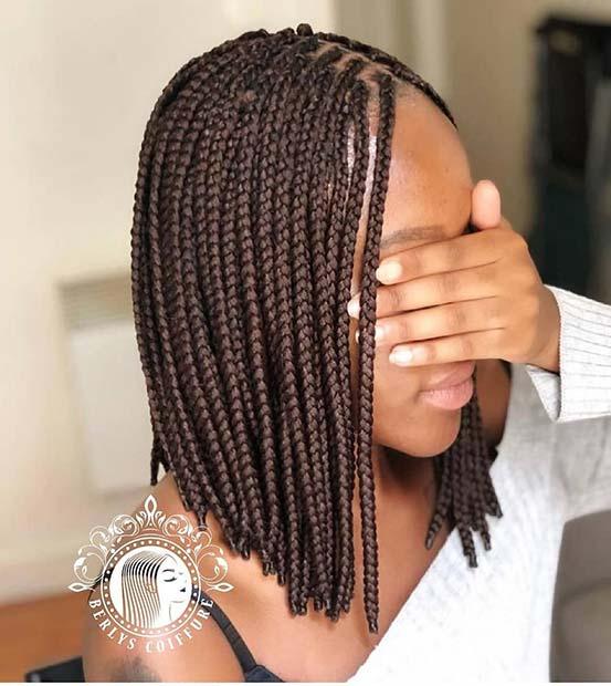 Thin Box Braid Hairstyle