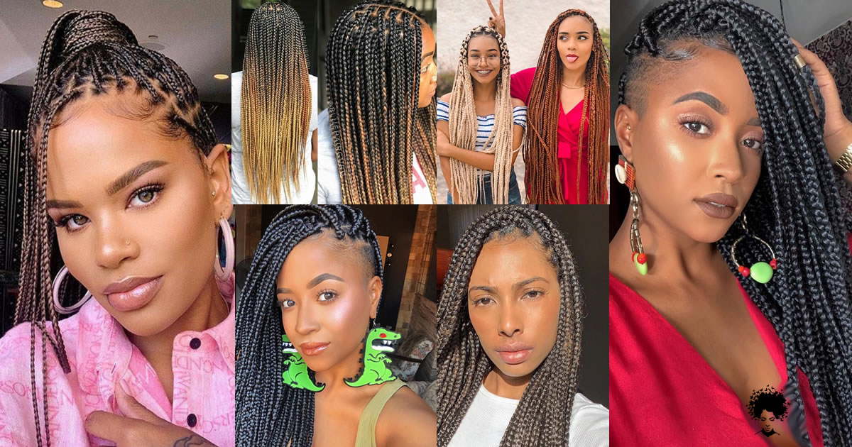 What is The Secret of Long Shining Braids?