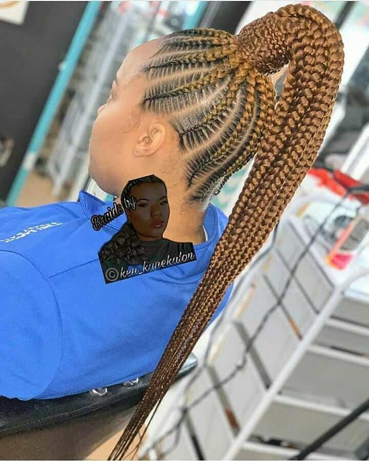 19 PHOTOS Splendid Box Braids For Ladies Black Braided Hairstyles 18