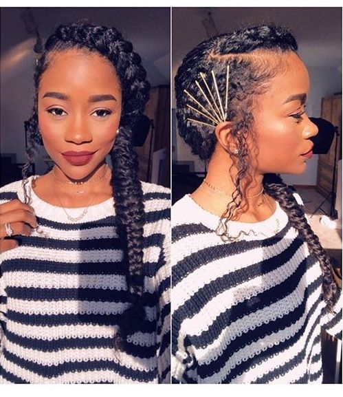 Braids for Black Women hairstyleforblackwomen.net 2776