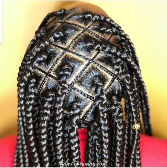 Amazing African Hair Braids Styles – Popular trends in Black Braided Hairstyles tolugabriel com 3