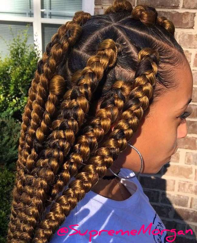 Braided Hairstyles for Little Girls hairstyleforblackwomen.net 165