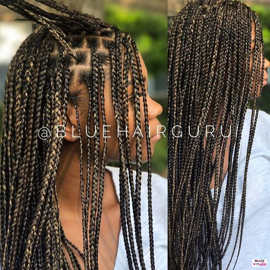 Beautiful Braided Hairstyles 2021 hairstyleforblackwomen.net 3710