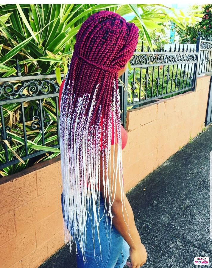 Beautiful Braided Hairstyles 2021 hairstyleforblackwomen.net 7098
