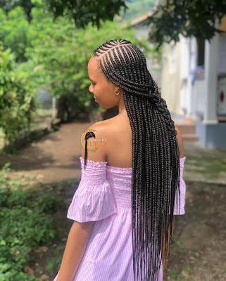 Black Braided Hairstyles for ladies 2