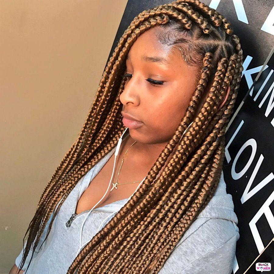 Box Braids hairstyleforblackwomen.net 1249