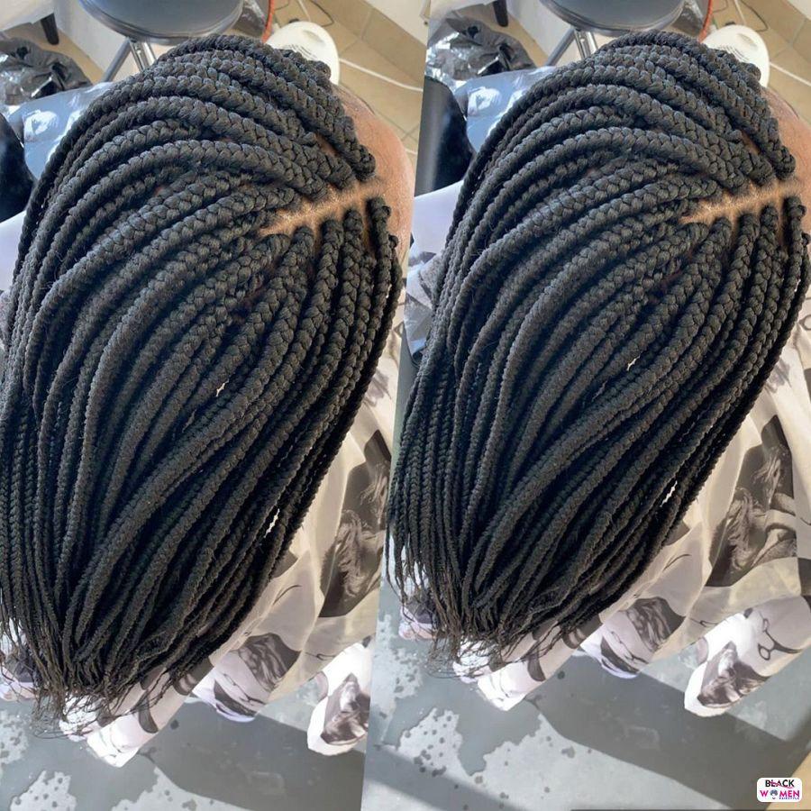 Box Braids hairstyleforblackwomen.net 1403