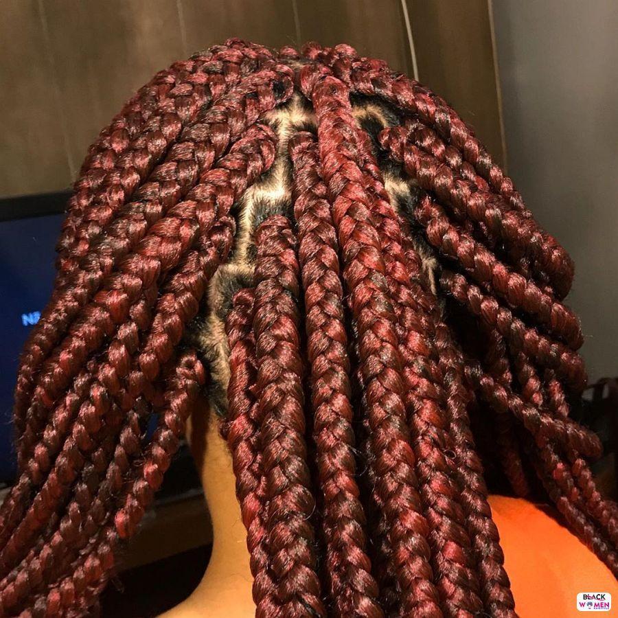 Box Braids hairstyleforblackwomen.net 1858