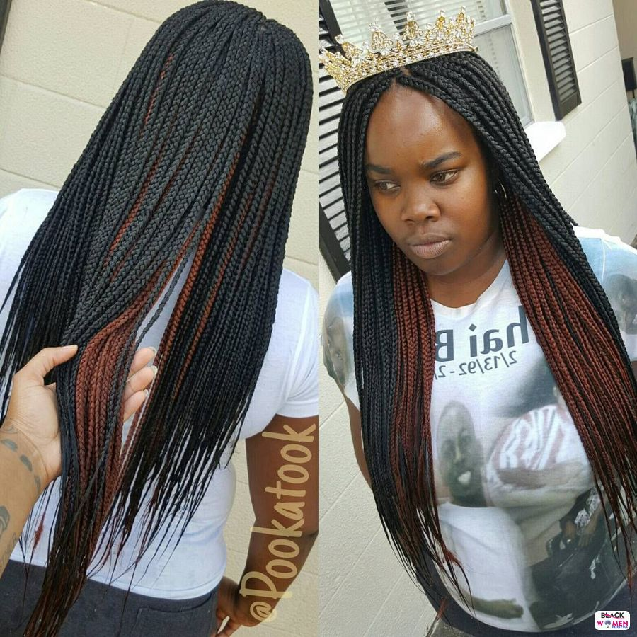 Box Braids hairstyleforblackwomen.net 210