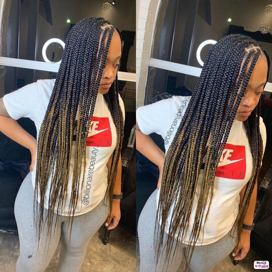 Box Braids hairstyleforblackwomen.net 2178