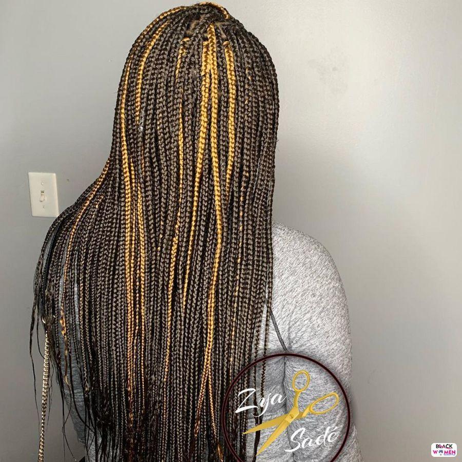 Box Braids hairstyleforblackwomen.net 2364