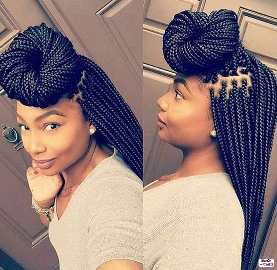 Box Braids hairstyleforblackwomen.net 2513