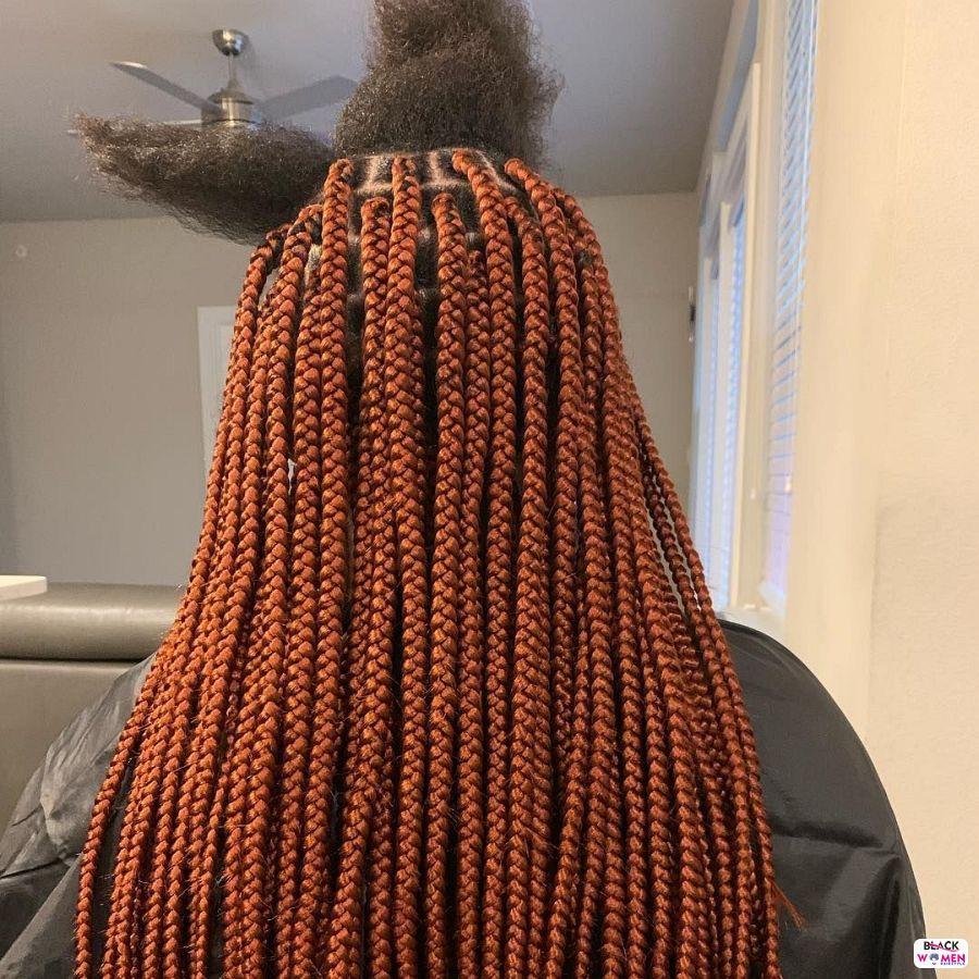 Box Braids hairstyleforblackwomen.net 3107