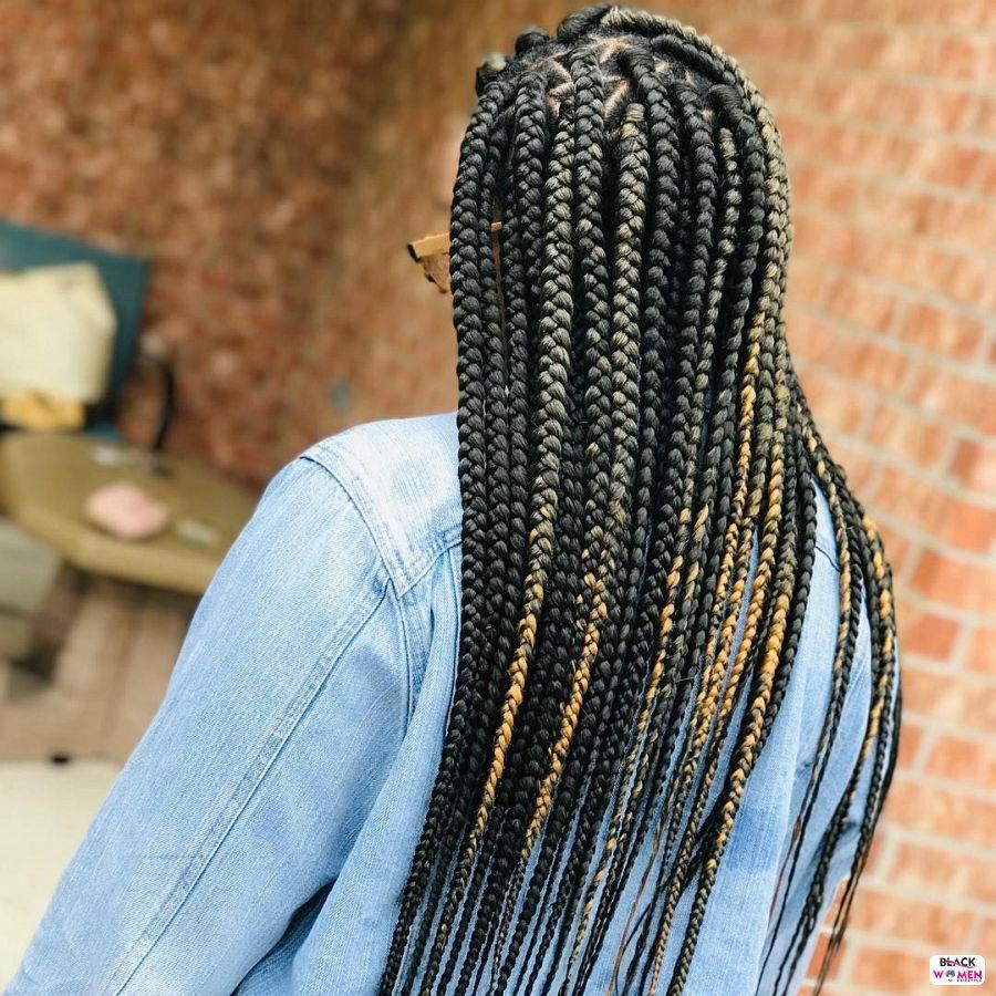 Box Braids hairstyleforblackwomen.net 3194