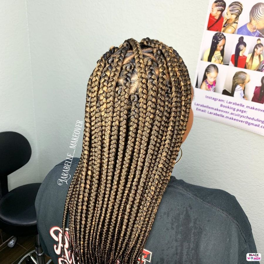 Box Braids hairstyleforblackwomen.net 3499