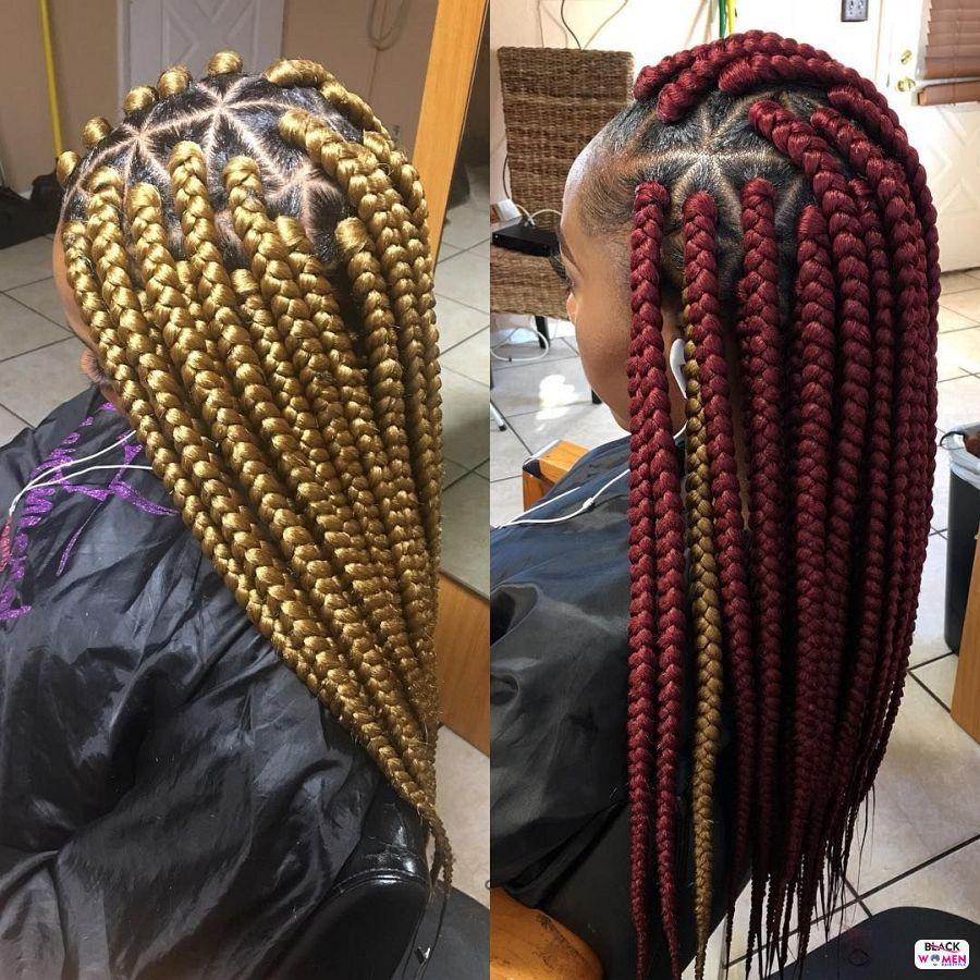 Box Braids hairstyleforblackwomen.net 4361