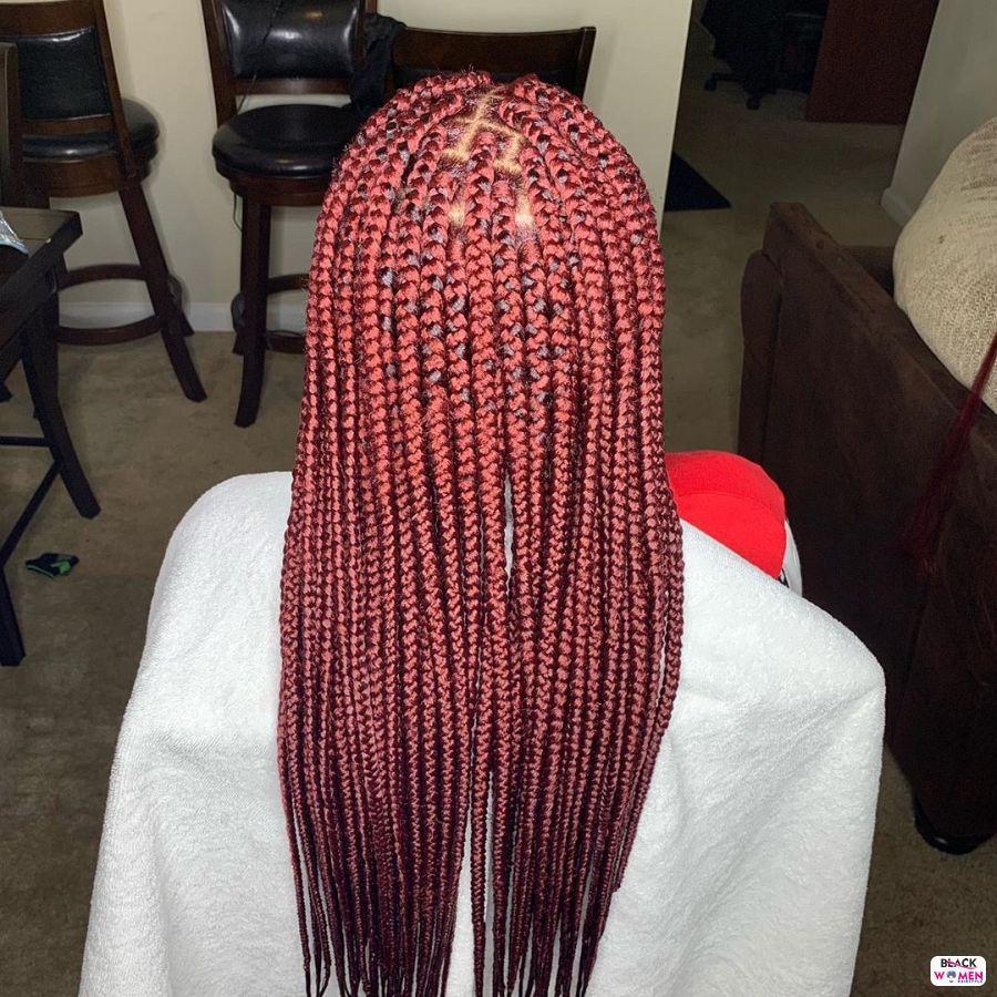 Box Braids hairstyleforblackwomen.net 4535