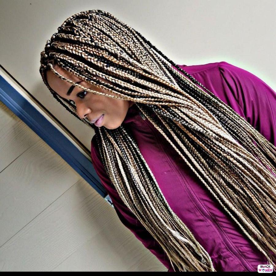 Box Braids hairstyleforblackwomen.net 5270