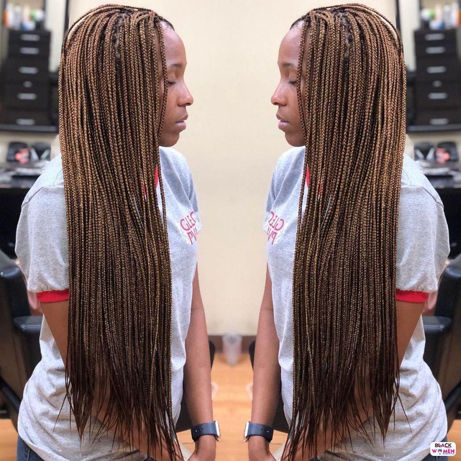 Box Braids hairstyleforblackwomen.net 5893