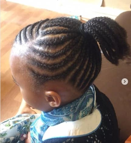 Short Braided Hairstyle With A Pony