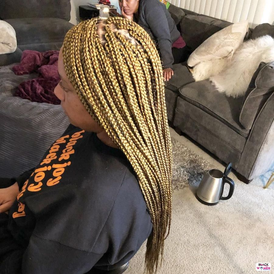 Box Braids hairstyleforblackwomen.net 6167