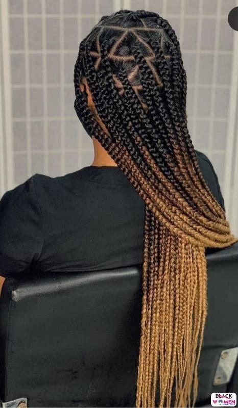 Braids hairstyles 022