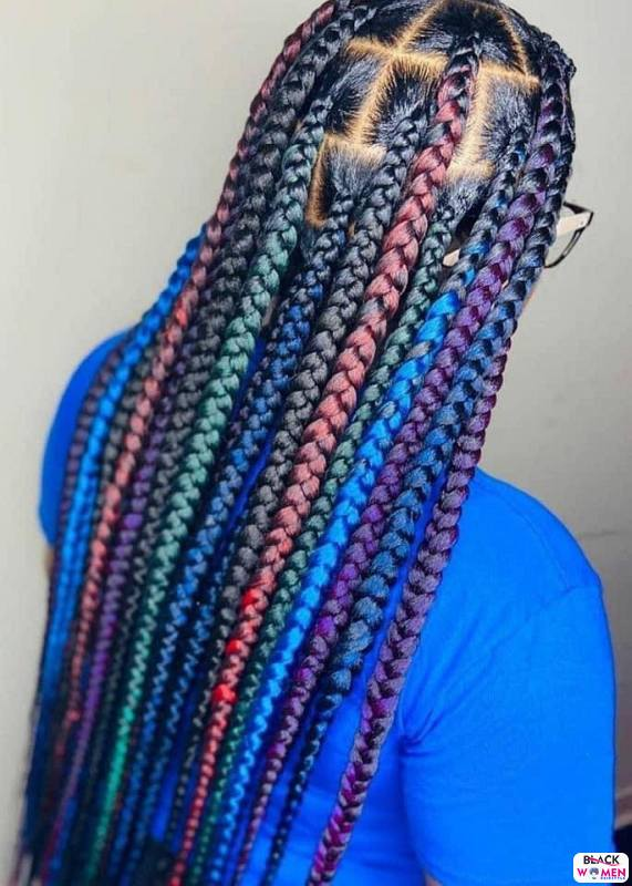 Braids hairstyles 024