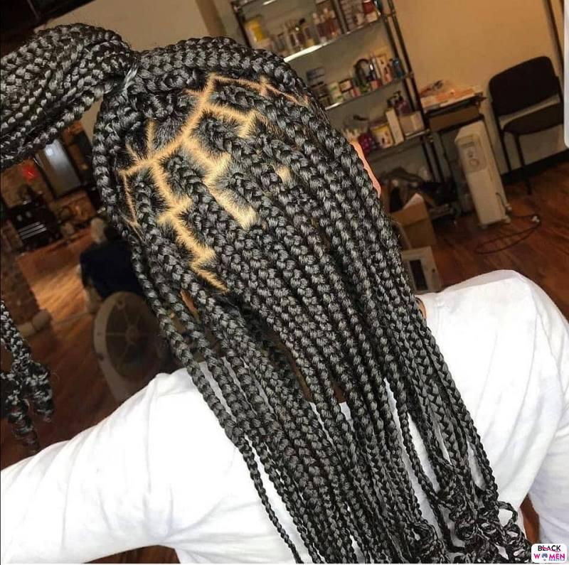 Braids hairstyles 027