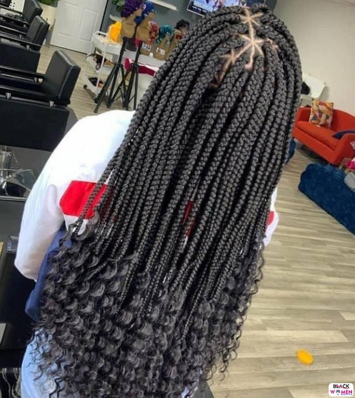 Braids hairstyles 029