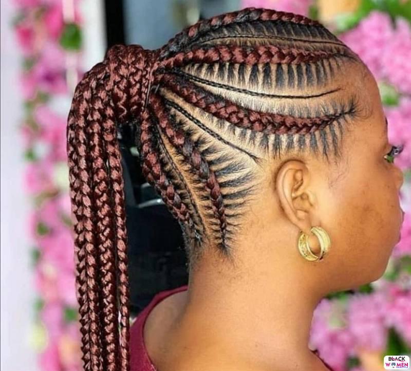 Braids hairstyles 049