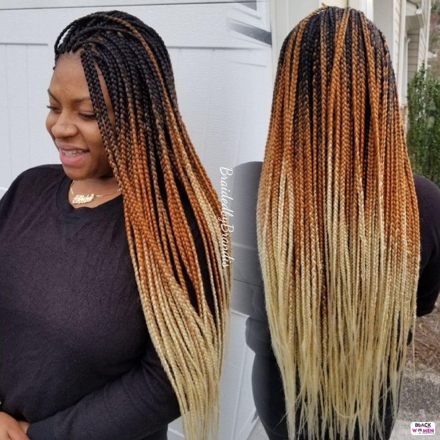 Box Braids hairstyleforblackwomen.net 2690