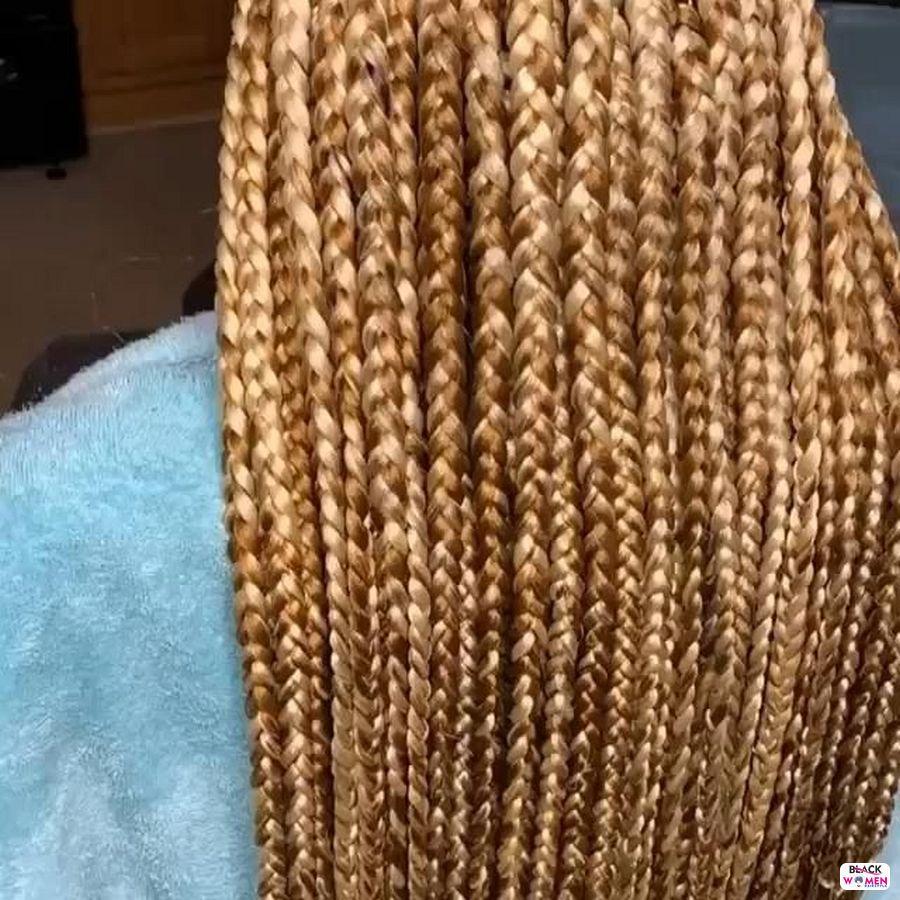 Box Braids hairstyleforblackwomen.net 5197